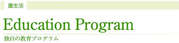 独自の保育・教育プログラム